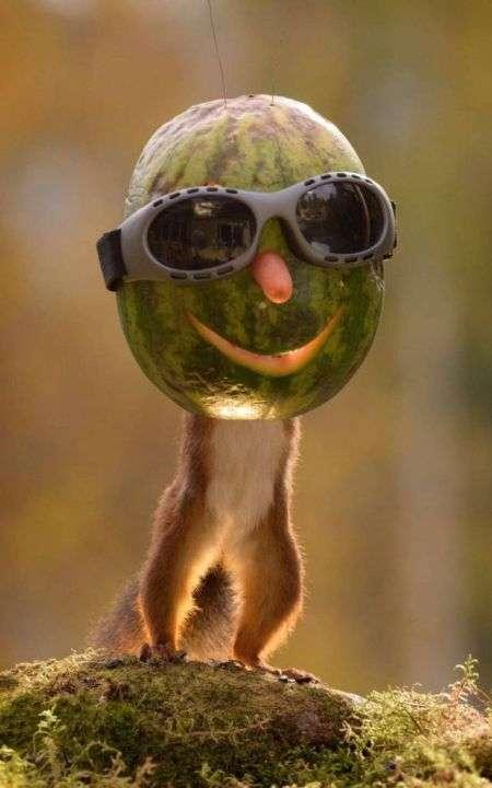 Предлагаем вам немного посмеяться. Большой пост с прикольными картинками, фотками и мемами, чтобы скрасить этот осенний день. Приятного просмотра!