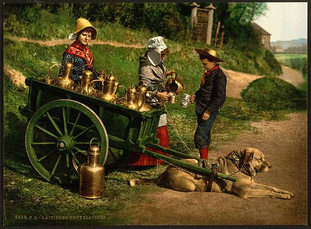 Уникальные фотографии 1890-х годов, раскрашенные вручную