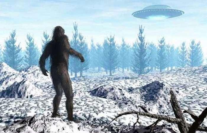 10 интересных фактов о снежном человеке