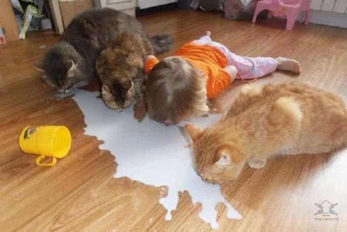 Забавные фото с детьми