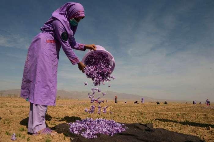 Свежие интересные фотоснимки из Афганистана