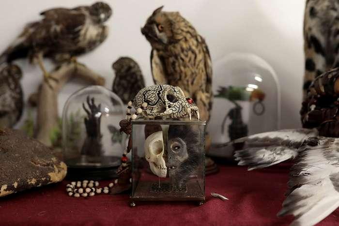 Странные и необычные предметы, изъятые в аэропорту Хитроу