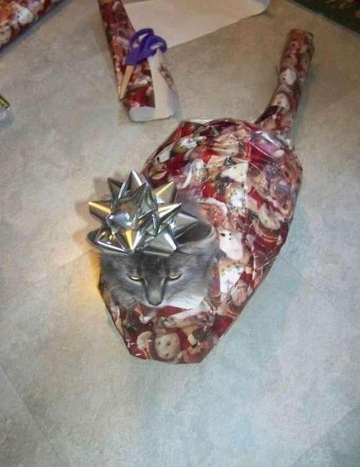 Потешные рождественские декорации, с которыми явно что-то не так