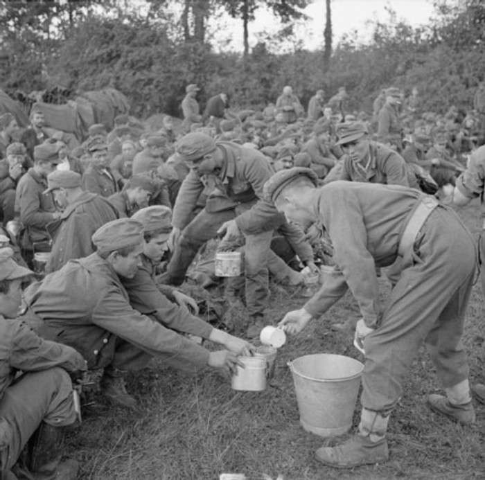 Зачем британцы во время Второй Мировой Войны выкупили весь черный чай
