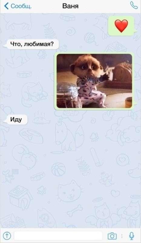 15 забавных СМС-переписок, в которых женский пол отжигает