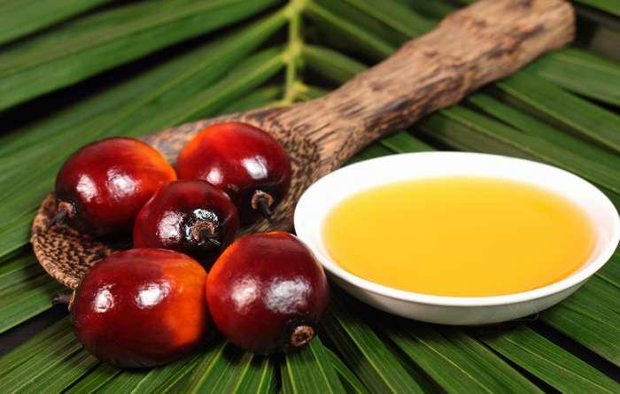 Россия отказывается от отравы – пальмового масла