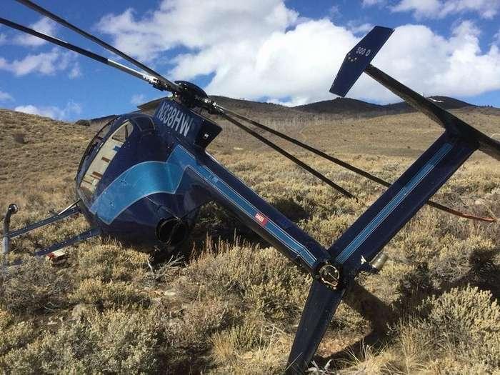 Американский лось умудрился сбить вертолет рогами