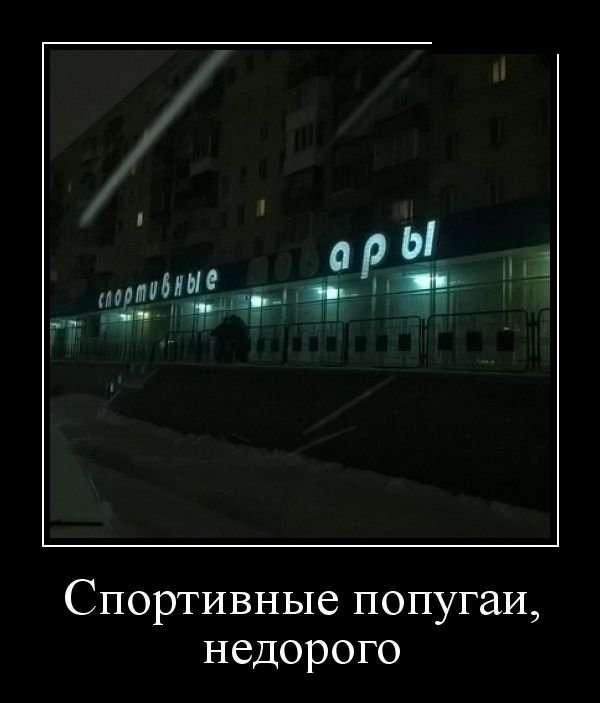 Демотиваторы (15.02.18)