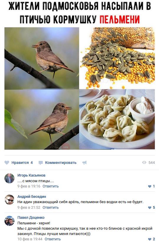 Смешные комментарии из социальных сетей 16.02.2018