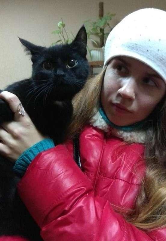 Женщина заметила на улице движущийся мешок… Внутри задыхалась кошка, которая готовилась родить котят