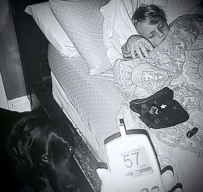 """""""Всё выглядело хорошо. Но всё было плохо!"""" Ночью пёс поднял хозяйку с кровати, рядом погибал ее сын"""
