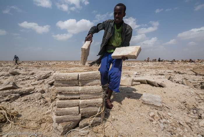 Работа в Эфиопии: сколько платят за добычу соли?