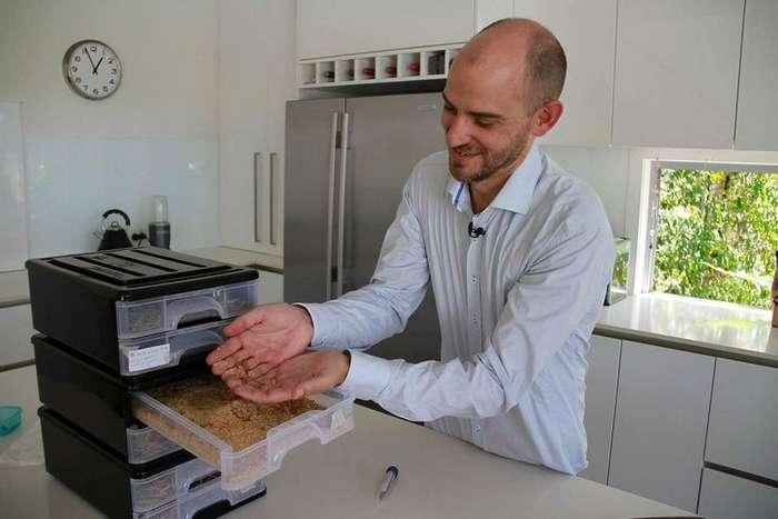 Ученый выращивает съедобных насекомых в промышленных масштабах