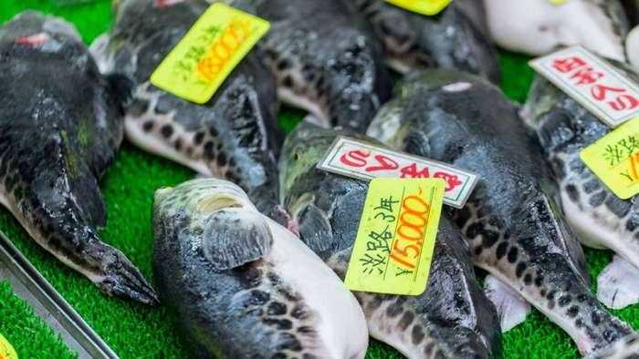 Опасные для жизни блюда, пользующиеся популярностью в разных уголках планеты