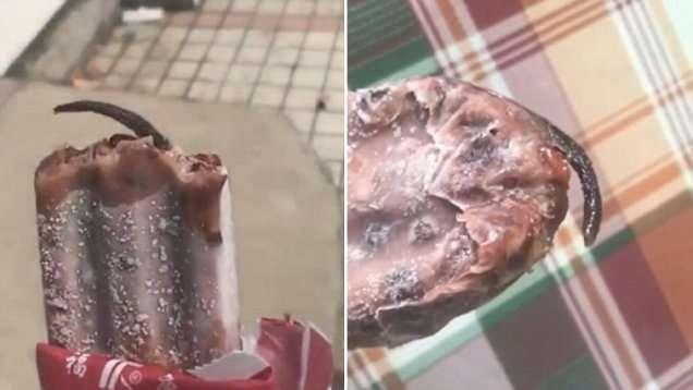Крысиный хвостик заставил женщину разлюбить эскимо-5 фото + 1 видео-