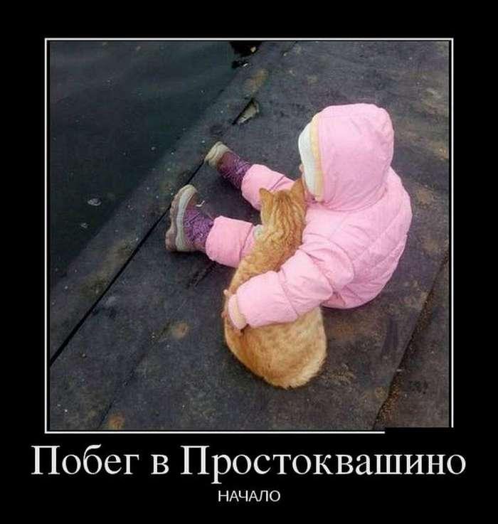 Демотиваторы 25.04.18 (29 фото)