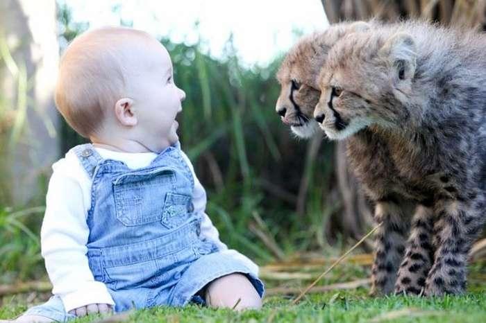 10реальных историй невероятной дружбы между людьми идикими животными