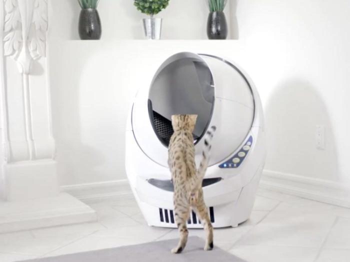 12 интеллектуальных домашних гаджетов, которые сделают уборку без участия человека