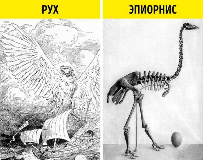 9мифических персонажей, которые существовали насамом деле