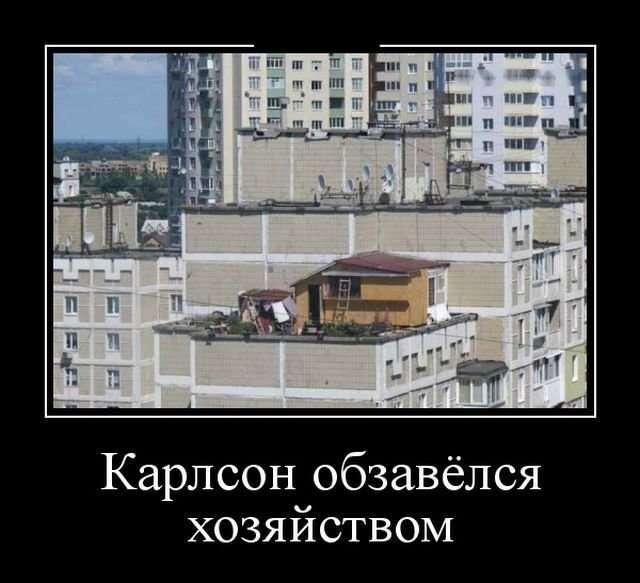 Демотиваторы-24 фото-
