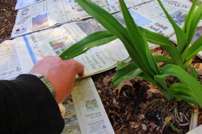 Почему все газеты и книги желтеют, и Как подобное предотвратить