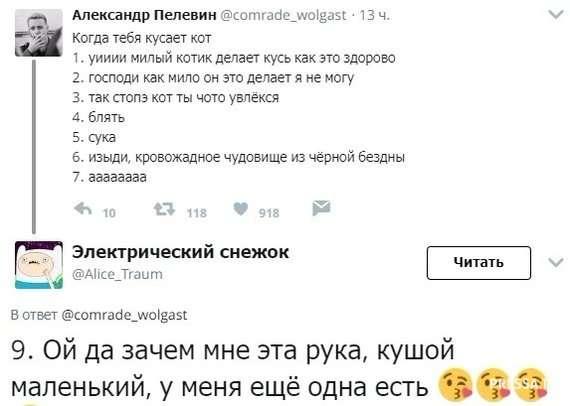 Скриншоты смешных твитов и комментариев из соцсетей