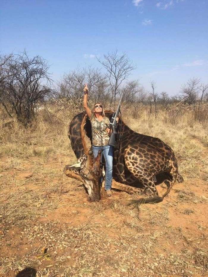 Американка, застрелившая редкого жирафа, возмутила Интернет-3 фото-