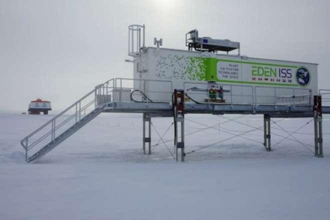 Выращивание овощей в Антарктиде