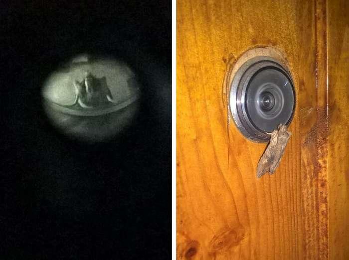 23паранормальных снимка, которые напугают лучше любого фильма ужасов