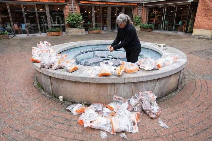 Художник оставила 100 000 монет в старом фонтане и через 24 часа они исчезли