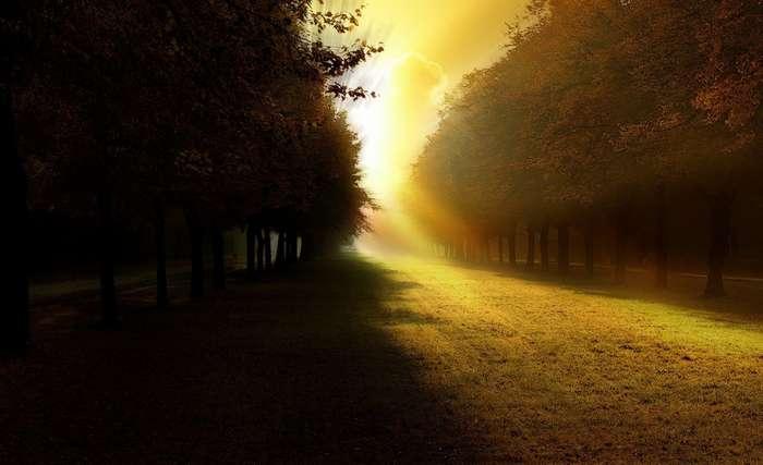 Сколько весит тень и свет