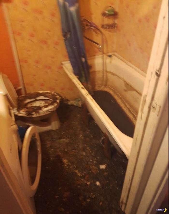 Жесть домашняя: дерьмовый потоп!