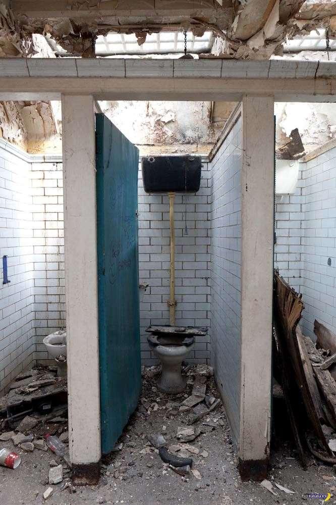 А вы смогли бы жить в общественном туалете?