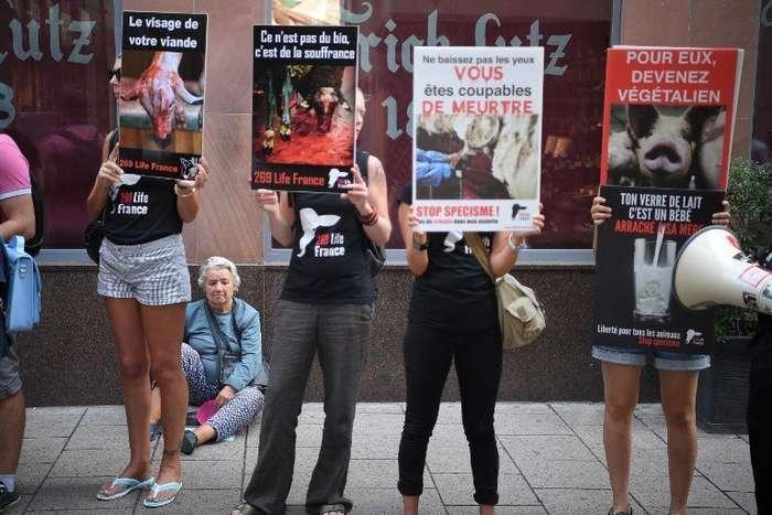 Во Франции задержали группу веганов, терроризирующих фермеров и владельцев сырных магазинов-4 фото-