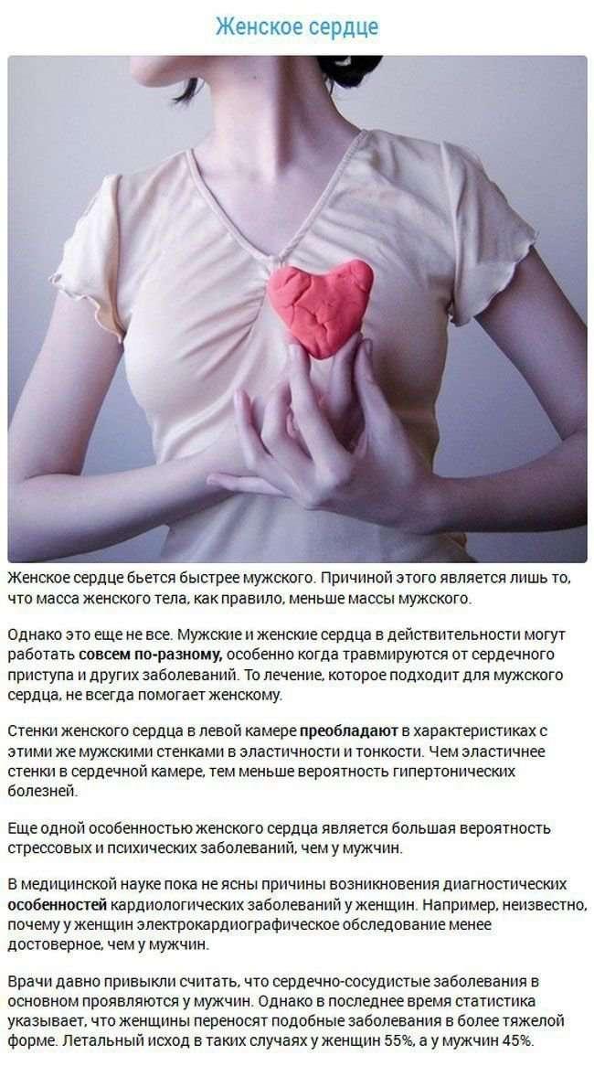 Факты об органах человека-16 фото-