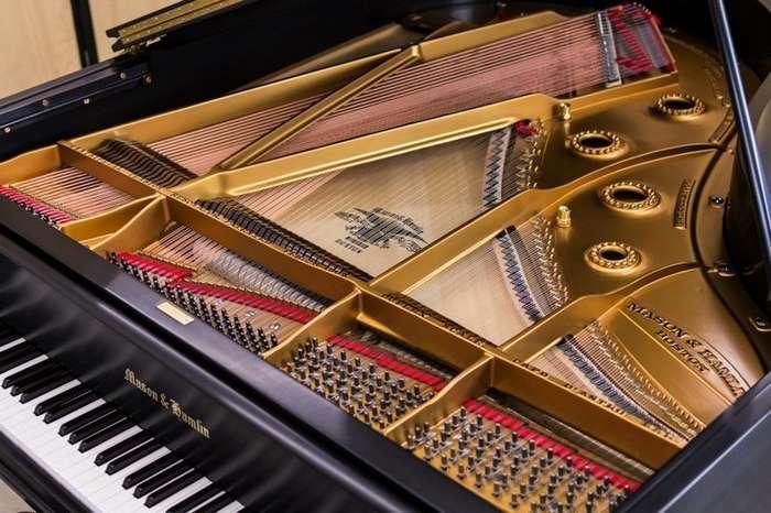 10 интересных фото изнутри, которые покажут, что скрывают музыкальные инструменты-12 фото-