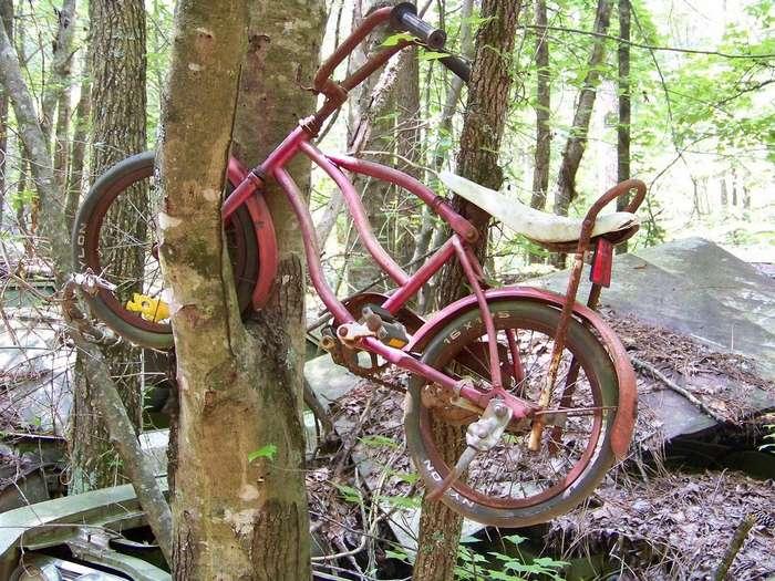 Велосипеды, которые уже никуда не поедут