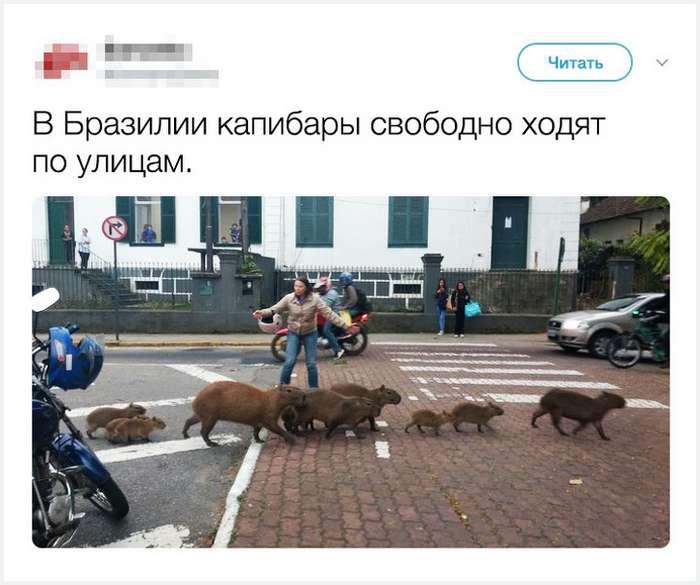18историй олюдях, которые переехали изстраны, новдуше остались русскими
