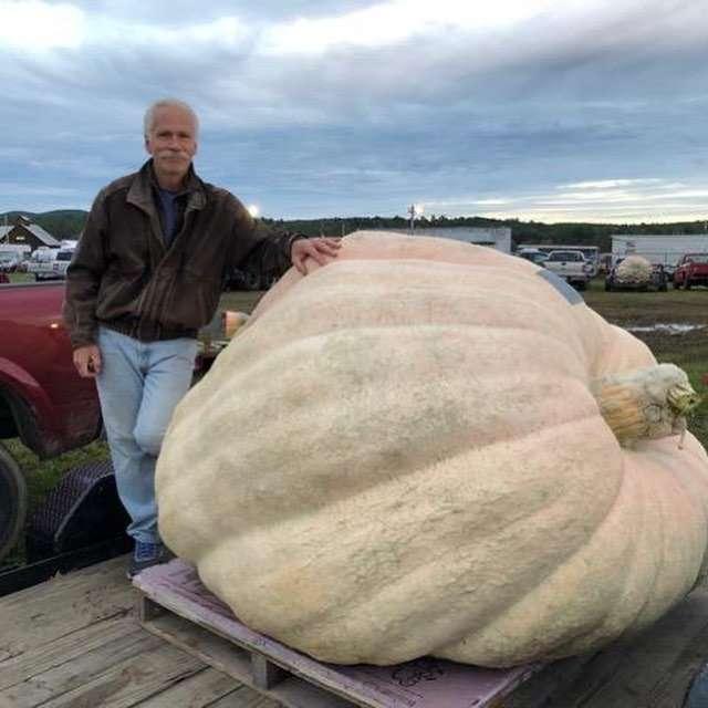 Овощные рекорды: тыква весом в тонну стала крупнейшей в Америке-2 фото-