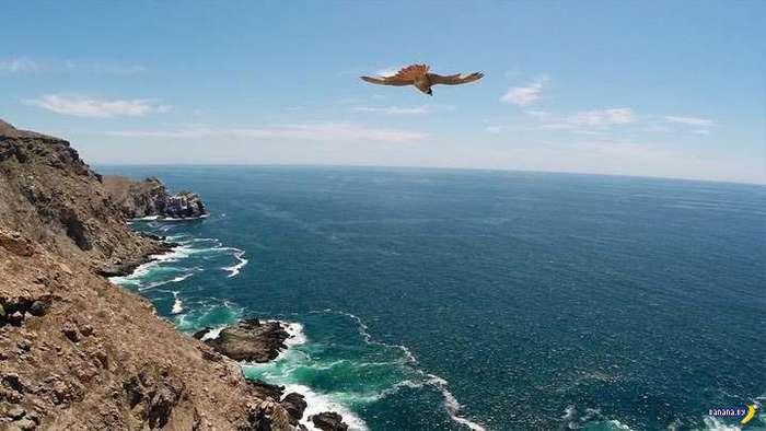Невероятные фотографии с дронов