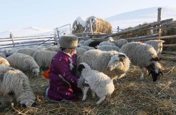 Фотографии о жизни сибиряков: как живут и отдыхают люди на Крайнем Севере-25 фото-