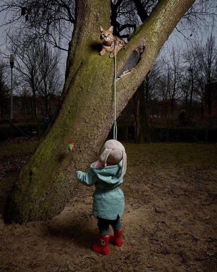 Изабелла Розендал — официальный фотограф домашних животных Амстердама