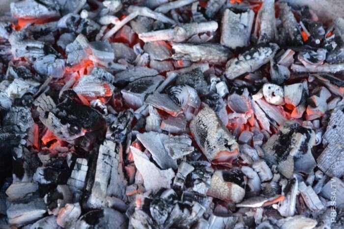 Рыбные отходы вместо топлива для круизного лайнера