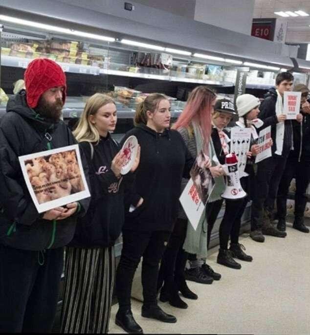 Веганы устроили митинг памяти в честь погибших рождественских индеек-10 фото-