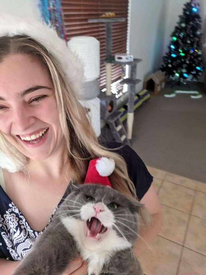 знакомства кто с котом