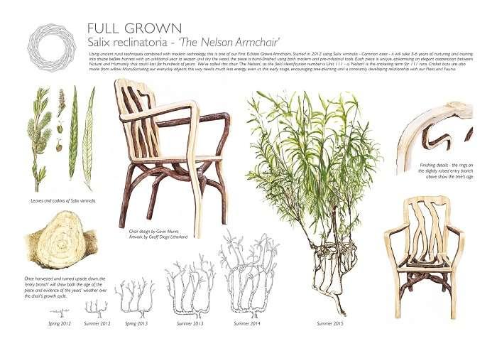 В Англии создали ферму по выращиванию дизайнерской мебели