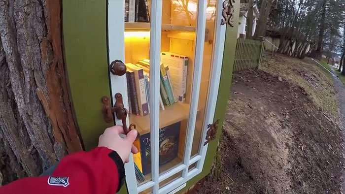 Бесплатная библиотека из дупла 110-летнего дерева