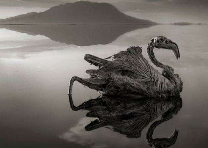 10 невероятных явлений природы-10 фото-