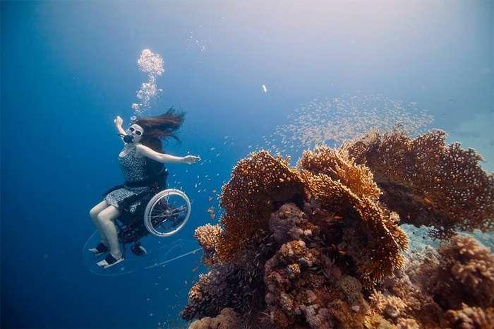 Специально адаптированное подводное кресло-коляска дало возможность заняться дайвингом-4 фото + 1 видео + 1 гиф-
