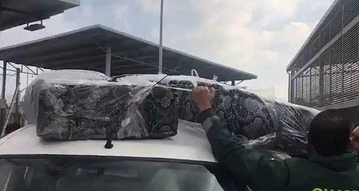 Двух мигрантов зашили в матрасы, чтобы переправить в Европу-3 фото + 1 видео-